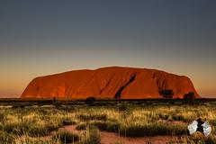 20160401-2ADU-054 Uluru