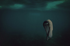 Into deep (Michelle Hughes Walsh Photography) Tags: ocean blue sea girl composite dark photography book deep dancer garland story editorial lonely macabre conceptual ballett