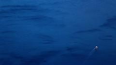 This is Greece... (Michael Kalognomos) Tags: blue sea summer landscape dawn boat fishermen aegean deep greece minimalism wrinkles endless ef24105mmf4l canoneos70d