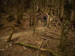20160607-P6070611.jpg (kendyck1) Tags: mountainbike northshore mtb northvancouver fromme nsride