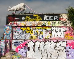 Faith Bebbington - Super Rat & Liverpool Graffiti (cocabeenslinky) Tags: park street new city uk pink england urban sculpture white streetart bird castle art liverpool writing garden botanical lumix graffiti photo milk triangle rat paint artist control bottles photos faith 4 letters fine arts creative culture super palace can warp baltic spray panasonic plastic skatepark jamaica skate writers popup graff gin pest 4m artiste merseyside metres superrat bebbington dmcg6 ©cocabeenslinky