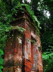 a portal to the past (SM Tham) Tags: trees bali plants overgrown indonesia outdoors island asia bricks doorway watergardens jungle gateway portal ferns waterpalace karangasem tirtagangga amlapura gardenstosee