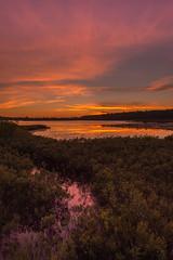 Twilit Reflections in the Marsh (eahackne) Tags: sunset reflections twilight marsh upperpeninsula keweenawpeninsula bostonpond