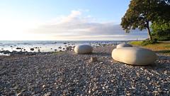 Small and big ones! (mpersson60) Tags: sea sweden stones sverige gotland visby hav stenar