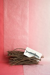 Dnne ste mit Fisch, 2016 (Lexi Blue) Tags: pink stilllife fish foil napkin branches rosa objects stilleben fisch colored stillife ste arrangement bunt abstrakt arranged serviette folie gestaltung gestaltet plastikfolie plasticfoil angeordnet objektfotografie arrangiert arrangedobjects canon6dmark3 luftblasenfolie