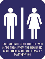 Matthew 19:4 (joshtinpowers) Tags: matthew bible scripture