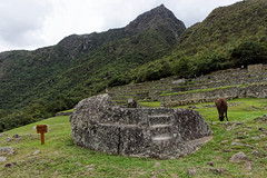 Kamień ceremonialny na Machu Picchu | Ceremonial rock
