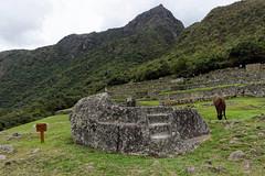 Kamień ceremonialny na Machu Picchu | Ceremonial rock