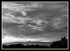 Sunset Fuji Neopan Acros 100 (veggiesosage) Tags: sunset blackandwhite fujifilm x20 dxofilmpack fujifilmx20