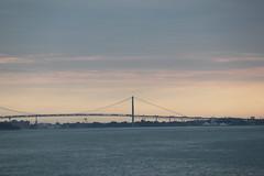 Belle Isle (Tricia Lynne) Tags: bridge sunset canada detroit belleisle ambassadorbridge beginnerdigitalphotographychallengewinner