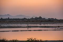 DSC_5381 (Pasquesius) Tags: sunset sea reflections tramonto mare lagoon sicily rosso riflessi saline sicilia saltponds marsala stagnone lagunadellostagnone riservanaturaledellostagnone