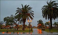 Benavdez (Totugj) Tags: plaza argentina noche nikon cityscape sigma urbano verdes tarde urbanismo urbanscape urbe espacios provinciadebuenosaires 816mm benavdez d5100