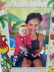 4-Resized_20160612_161452 (allislandmedia) Tags: monkey funny