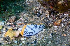 Broken Mug (ShaunMYeo) Tags: scubadiving inkwells gibraltar calpe underwaterphotography  gibilterra ikelite      gibraltr  cebelitark gjibraltar ibraltaro hibraltar xibraltar giobrltar gibraltrs gibraltaras ibilt