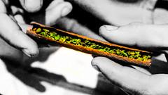 Cannabis (matteopalermo) Tags: blackandwhite bw color green cool weed hands documentary pot document marijuana blunt maryjane cannabis bluntrolling
