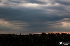 untitled-19 (Kajetan Ciesielski) Tags: light sky cloud sun storm rain shadows outdoor shelf sunrays d40 niokon nikond40 pallas135