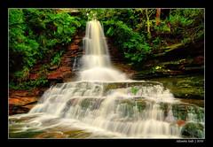 Allambie Falls (.davesmith.) Tags: waterfall sydney australia falls nsw newsouthwales allambie northenbeaches