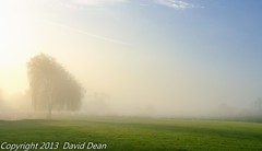 River Mist Willow (jactoll) Tags: mist tree rural landscape dawn countryside nikon willow barton warwickshire willowtree riveravon d7000 jactoll nikcolorefexpro4