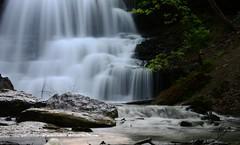 DSC_9278 (Luella Maria) Tags: falls waterfalls decew
