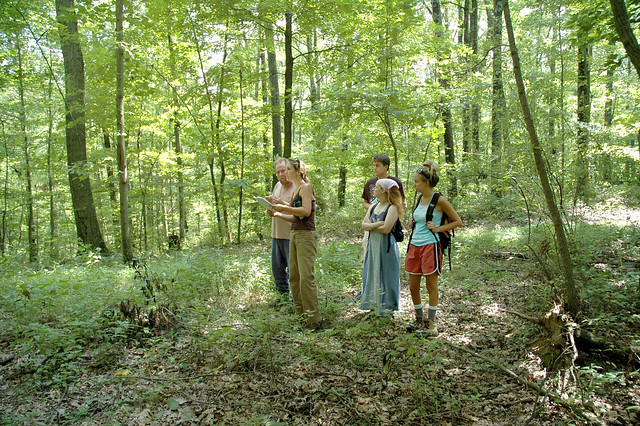 Yellowwood State Forest - July 2005