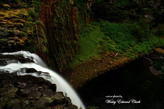 037 (Photos by Wesley Edward Clark) Tags: oregon silverton waterfalls scottsmills abiquacreek abiquafalls