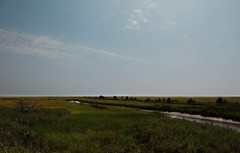 Wildlife Refuge Wetlands in Heislerville NJ 08-31-13 (MelenaMe) Tags: sky river canal newjersey stream nj marsh savannah prairie passage grassland waterway saltmarsh delawareshorebay