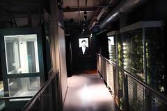Guinness Storehouse: TBEX Opening Night | Dublin 2013 (hoomygumb) Tags: travel ireland geotagged reisen guinness rialto openingnight travelblog irl guinnessstorehouse tbex travelblogger failteireland lovedublin tbexdublin geo:lat=5334195333 geo:lon=628747167 failtenight