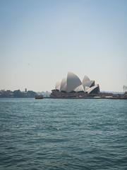 Opera House (seasonal wanderer) Tags: water harbour sydney australia operahouse sydneyoperahouse voigtlandernokton25mmf095 olympusomdem5