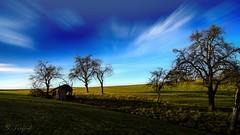 Christmas stable (Simeon Trefoil) Tags: christmas blue green weihnachten landscape wiese stall landschaft stable