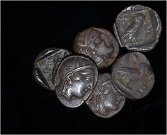 A hoard of tetradrachms (Rob Sing) Tags: silver coins pile athenian tetradrachm