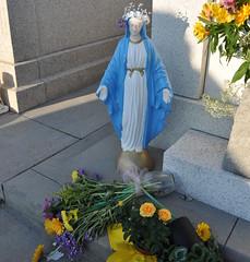 Cangelosi Mary