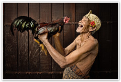 The Balinese Elderly And His Fighting Cock (Vin PSK) Tags: portrait bali indonesia cock fighting ujing thebalineseelderly