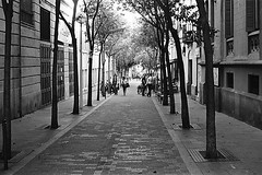 Gracia (Antonio Ferraroni) Tags: barcelona autumn winter espaa film spring erasmus bcn espana 400 plus ilfordhp5plus400 autunno ilford yashica barna otono analogic 2014 espanya fxd 2013