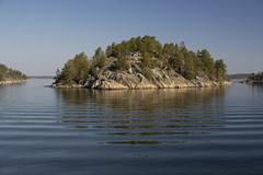 Stockholms Skärgård (szefi) Tags: sea nature landscape sweden sverige archipelago skärgård sigma3014