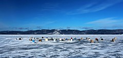 Pche d'hiver  / Winter Fishing (2-2) (deplour) Tags: winter ice river tents fishing hiver rivire glace cabins pche smelt restigouche tentes cabanons perlan