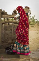Rural life of Sindh (S.M.Rafiq) Tags: pakistan desert sindh thar rurallife