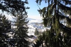 150214 046 (ancema) Tags: winter snow nature germany walking bayerischerwald bhmen baumwipfelpfad snow150214