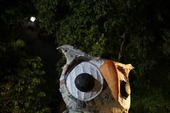 DSC04349_resize (selim.ahmed) Tags: nightphotography festival dhaka voightlander bangladesh nokton boishakh charukola nex6