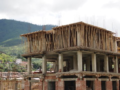 Bamboo is still used to build houses throuout Asia!