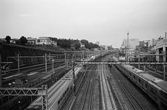 Leica_m_BW_5384_TOKYO (OPTIK AXIS) Tags: camera leica blackandwhite film monochromatic m42 135  rf leicacamera  summaron  blackandwhitefilm       analoguephotography  ernstleitzgmbhwetzlar summaronf35cm135  m garylevel 35mmf35