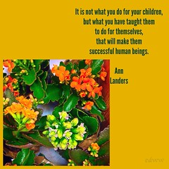 184 (EDWW day_dae (esteemedhelga)) Tags: life flowers plants love beach me nature beauty loving garden blessings creativity hope living walks alone remember peace hand risk friendship time god you faith joy lakes parks belief celebration intelligence thoughts together gift quotes soul future dreams passion knowledge laughter worry strength care tomorrow happyholidays yesterday ponds teach sayings herb learn struggle fellowship gentle courage nightmares nurseries postive encouragment edww daydae esteemedhelga helpconfidence