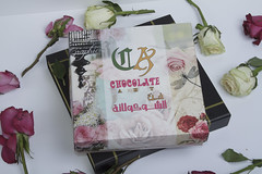 chocolate  art   (fahad.altmeemy) Tags: red art chocolate