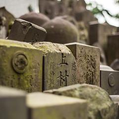 (M.Boubou) Tags: city travel green japan stone temple 50mm tokyo walk exploring culture japenese