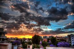 Sunset in Limassol /    (Kochum) Tags: trees sunset sun dawn nikon cyprus hdr limassol 1870   d90 nikkor1870