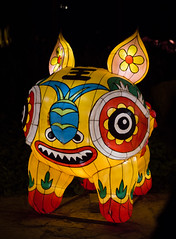 _DSC9735_2 (Elii D.) Tags: light fish flower animal night zoo monkey neon dragons lantern lampion dargon