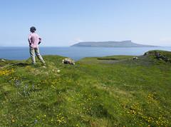 05_06_2016_1153 (andysuttonphotography) Tags: horse island scotland small scottish nan muck eilean isles each hebrides eigg hebridean
