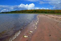 (Zak355) Tags: beach scotland scottish sunny bute rothesay isleofbute scalpsiebay