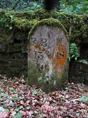 Wallington (aj.gardner) Tags: stone text northumberland numbers lichen miles roadside mileage information milestone indicator numerals cambo wallington indicators indication nbrbhx13 hexhamtorothbury