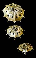 DSC_1062.jpg (Wellstood) Tags: night umbrella star waterloo boardwalk