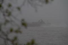 Pea-soup Fog (skram1v) Tags: canada fog marine fishermen manitoba commercial thick peasoup pickerel lakewinnipeg localknowledge livelihood may2016 lakesmarts